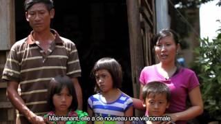 Vietnam Hearts HD