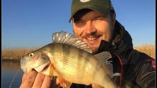 Рыбалка на маныче места для рыбалки