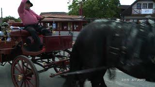 Rácalmási Gyuszi  lovasnapja  ZGSTUDIO VIDEÓ OFFICIAL ZGSTUDIO