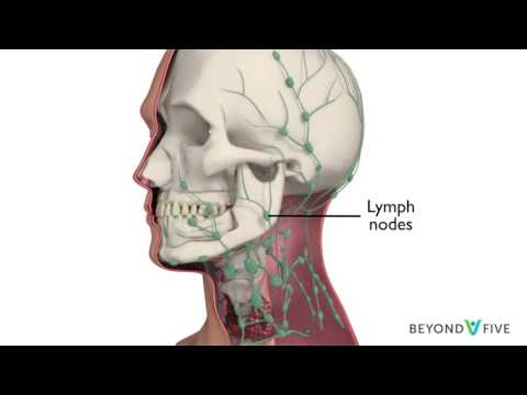 Hpv head and neck cancer review
