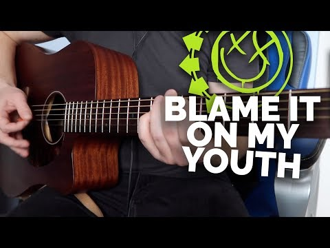 Blink-182 - Blame It On My Youth (Acoustic Cover) - Lucas Hardy