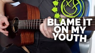 Blink 182   Blame It On My Youth (Acoustic Cover)
