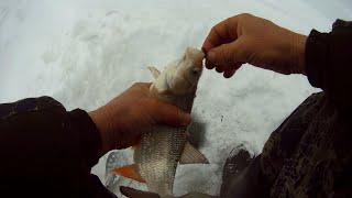 В этой лунке ассорти рыбы! Рыбалка в коряжнике
