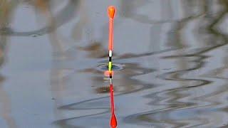 Ловля карася на поплавочную удочку михалыч