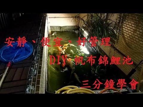 三分鐘學會! DIY錦鯉帆布池~公寓也能輕鬆養!