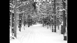 Eric Whitacre, Robert Frost   Stopping By Woods On A Snowy Evening (Sleep)