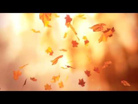 Падающие осенние листья