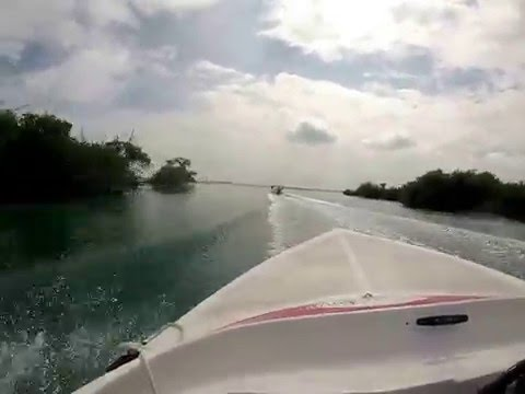 Cancun Mexico Jungle Tour Speed Boat Amazing