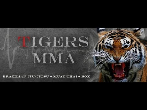 Training Tigers MMA 001 Fight and Force Gym
