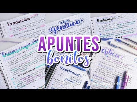 Como hacer APUNTES BONITOS - DanielaGmr ♥