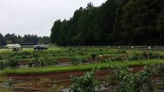 THE FARMのイメージ