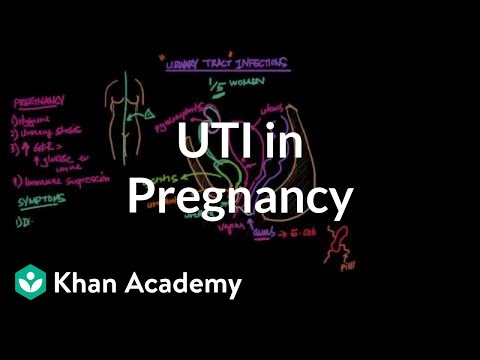 UTIs in pregnancy (video) Khan Academy