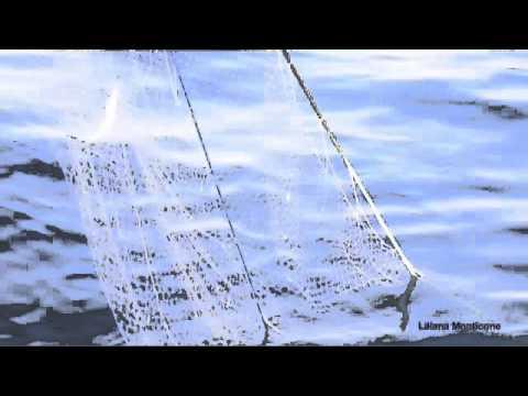 La pesca in area Di Mosca il distretto di Istra