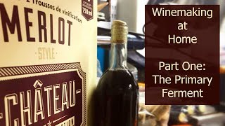 Winemaking at Home Part One: The Primary Ferment