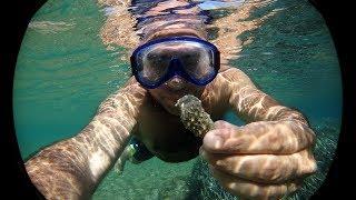 Это Греция остров Кос день третий..пляж Парадайз