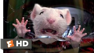 Stuart Little (1999) - Stuck in the Washing Machine Scene (2/10) | Movieclips