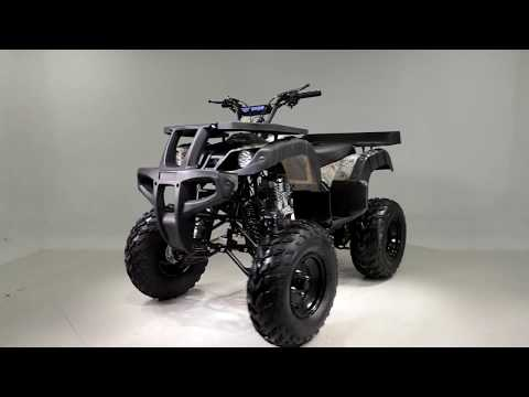 2019 Taotao USA Rhino250 in Dearborn Heights, Michigan - Video 1