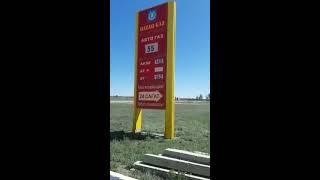 DEITA.RU Россияне заправляют российским бензином в Казахстане