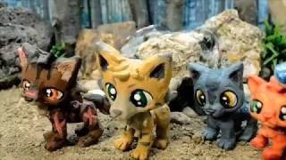 Warrior Cats Movie - Into the Wild (so far..)