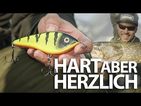 HART aber HERZLICH - Mit JERKBAIT auf HECHT