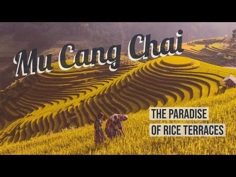 Mu Cang Chai - The Paradise Of Rice Terraces