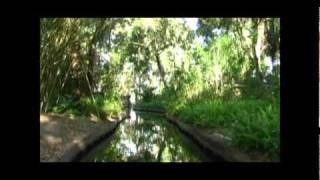 BLACK WATER DVD - Bonus (Incubus - Aqueous Transmission)
