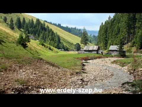 Szimferopol prosztata masszázs otthon