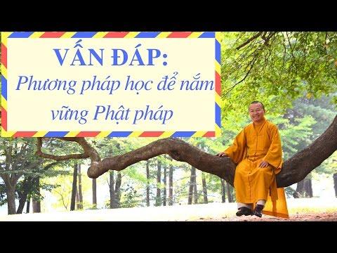 Vấn đáp: Phương pháp học để nắm vững Phật pháp, thân trung ấm, truyền y bát, nói nhiều nghe ít, rải tâm từ
