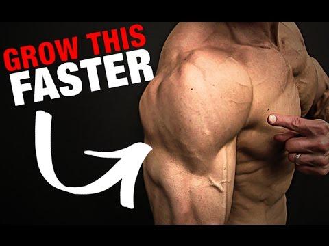 Mięśnie amortyzatory pompa