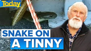 Fisherman faces off with one-metre tiger snake in his boat | Today Show Australia