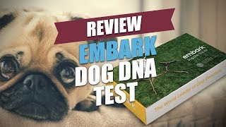 Embark Dog DNA Test Review (2018)