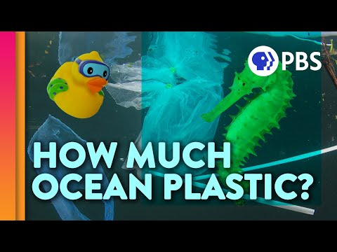 How Much Plastic is in the Ocean?
