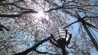 NHK連続テレビ小説『おひさま』テーマ曲