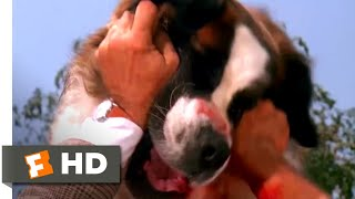 Beethoven (1992) - Framing Beethoven Scene (7/10) | Movieclips