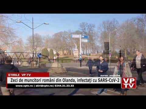 Zeci de muncitori români din Olanda, infectaţi cu SARS-CoV-2