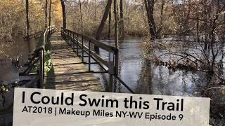 Appalachian Trail 2018 | NY-WV 9: I Could Swim this Trail