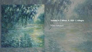 Piano Sonata no. 19 in Cm, D. 958