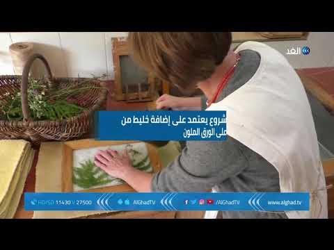 العرب اليوم - شاهد: بولندية تنقذ النحل من الانقراض باستعمال الورق