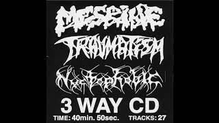 Mesrine  Traumatism  Nyctophobic   3 Way CD (full Split)