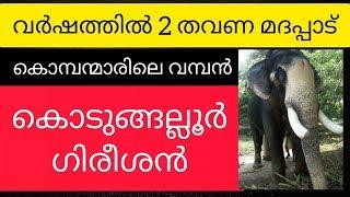 കൊടുങ്ങല്ലൂർ ഗിരീശൻ   Kodungallur Gireesan Elephant story