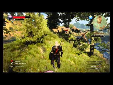 Geralt, Arachas Exterminator (+10 lvl boss fight) - смотреть