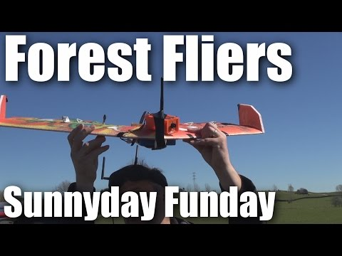another-forest-fliers-funday-of-rc-planes-and-multirotors