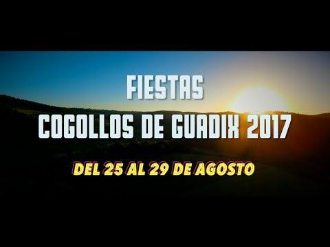 PROMO Fiestas Cogollos de Guadix 2017. Del 25 al 29 de Agosto. #OLECOGOLLOS