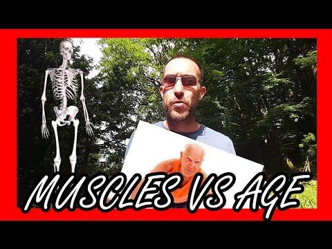 Nous étendons les muscles huméraux et les articulations