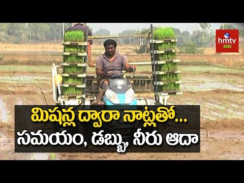 Modern Paddy Cultivation | Agriculture Technology | hmtv Agri