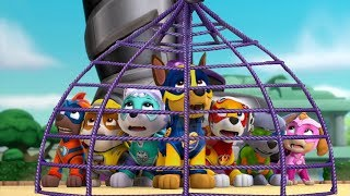 Paw Patrol Mission Paw - Mighty Pups Rescue Team Rubble, Skye Training Day - Nickelodeon Kids Games