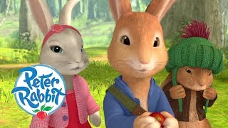 Peter Rabbit - Adventures with Best Friends | Cartoons for Kids