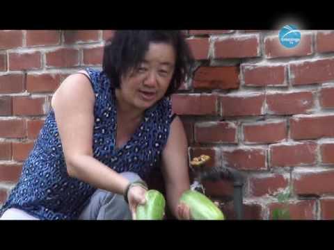 Hmong Report: Hmong Life - Corn & Garden May 31 2017