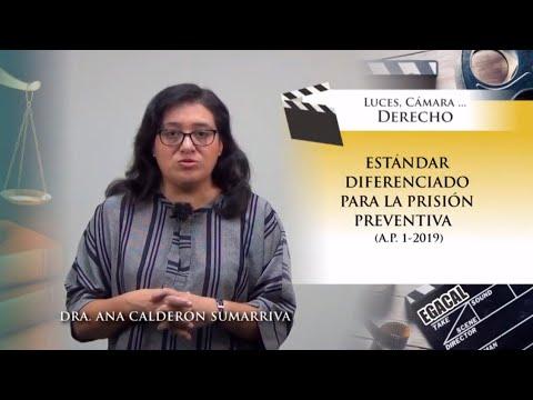 ESTÁNDAR DIFERENCIADO PARA LA PRISIÓN PREVENTIVA (A.P. 1-2019)  Luces Cámara Derecho 149