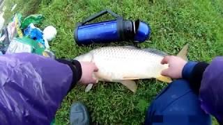 Платная рыбалка на дону в ростовской области